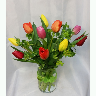 Tulips- Ten Vased from Shaw Florists in Grand Rapids, MN