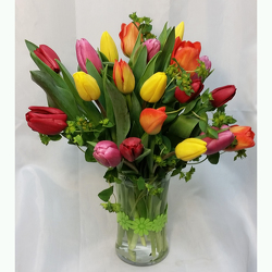Tulips- Twenty Vased from Shaw Florists in Grand Rapids, MN