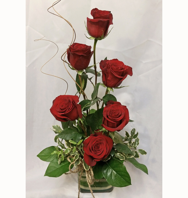 Half Dozen Red Roses- Stylized from Shaw Florists in Grand Rapids, MN