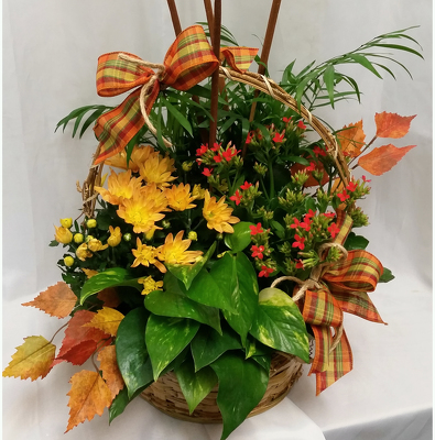 Fall-Harvest-Basket from Shaw Florists in Grand Rapids, MN