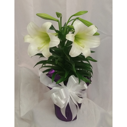 Easter Lily from Shaw Florists in Grand Rapids, MN